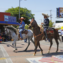 Equestrian Riders in the Memorial Day Parade
